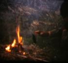 ©Elias Sfeir comme le feu (15)
