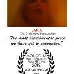 Best Experimental Film - Mongolia International Film Festival