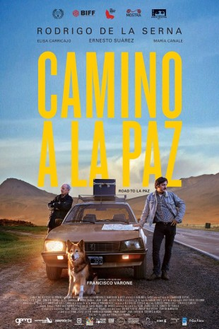 affiche-internationale-camino-a-la-paz-visiosfeir